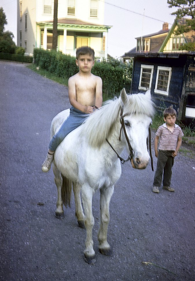 Free image of Young boy riding a small white horse with another boy standing nearby.