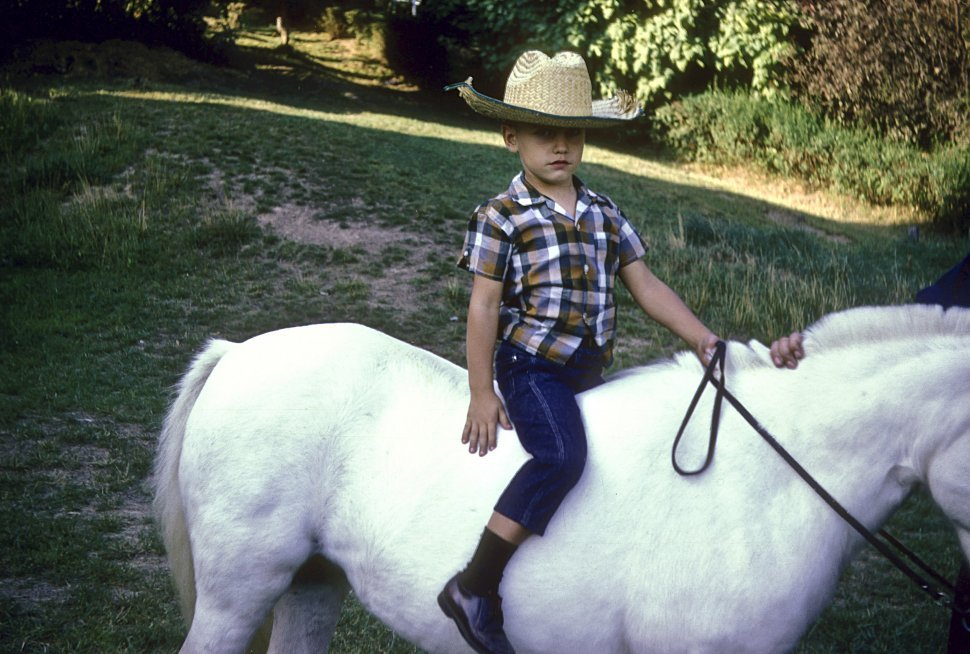 Free image of Young boy posing on a small white horse.
