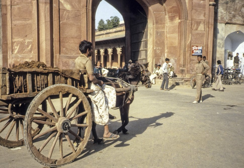 Free image of Man riding a horse and cart through the street, India