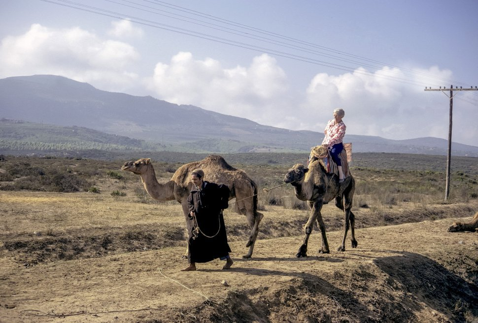 Free image of Woman touring on a camel with a guide, circa 1971, Morocco, Africa