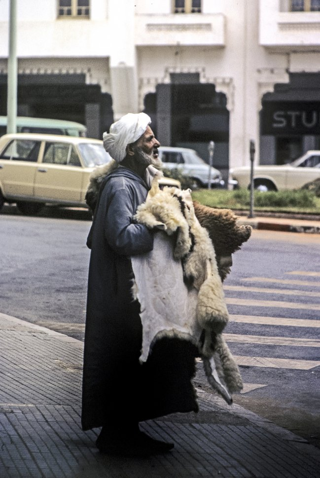 Free image of Man selling animal skins on the street, Morocco, Africa