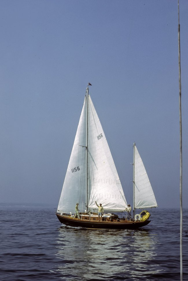 Free image of Group of people sailing and waving to the camera.