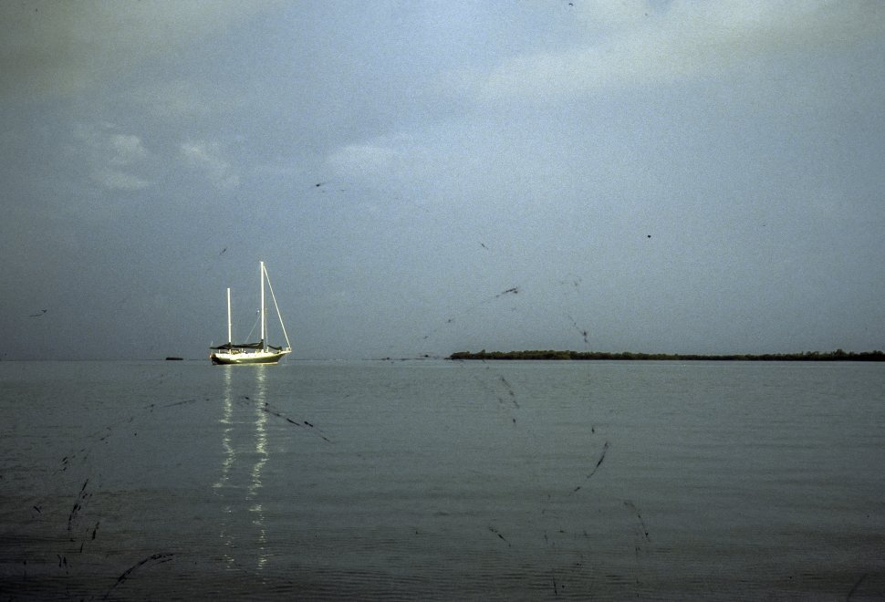 Free image of Sail boat floating in the distance.