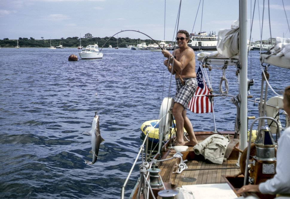 Free image of Man catching a small shark on board a sail boat.