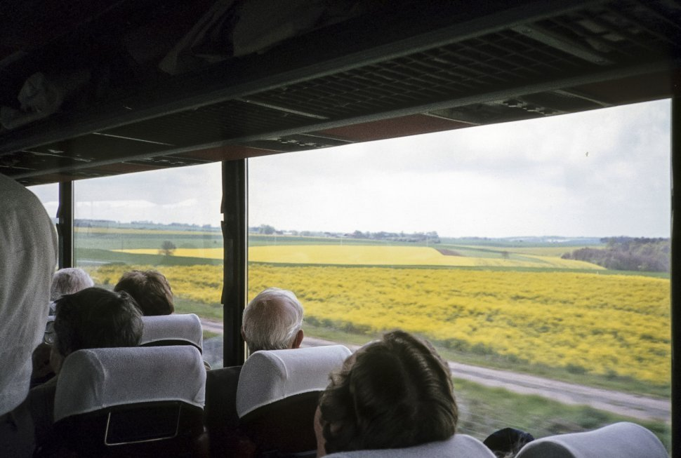 Free image of View of tourists looking at a large field of yellow flowers from a tour bus.