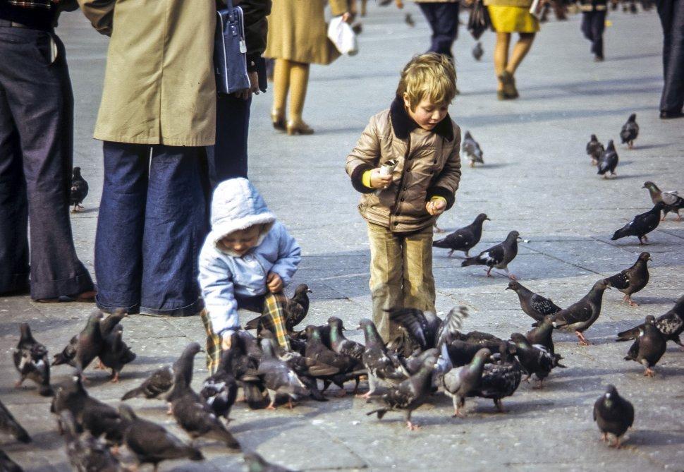 Free image of Two children feeding pigeons, Europe