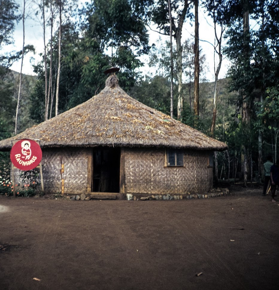 Free image of A person walking near a Raun Haus or traditional hut in the rainforest.