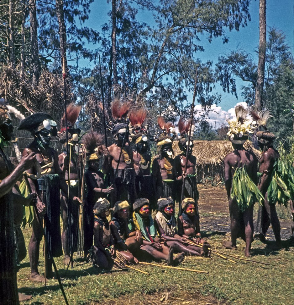 Free image of Large group of native villagers in traditional outfits in front of their grass huts.