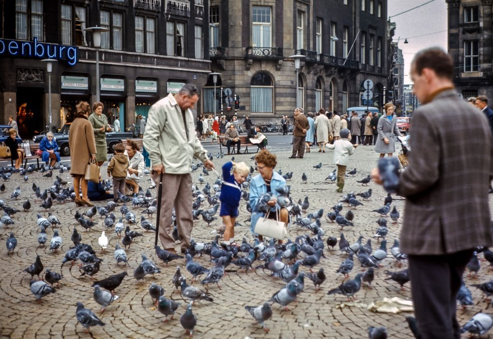 Free image of Family feeding pigeons in a city square.