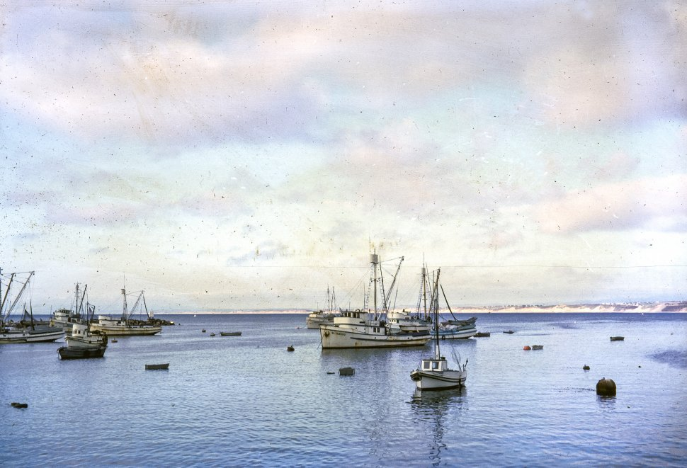 Free image of Boats floating in a harbor.