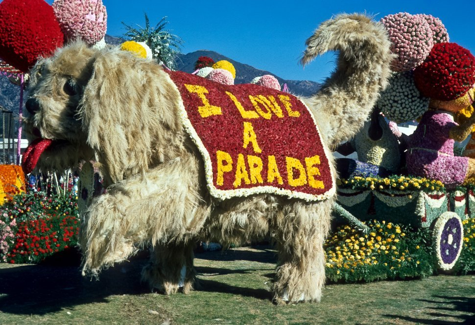 Free image of Large dog float in a parade, USA