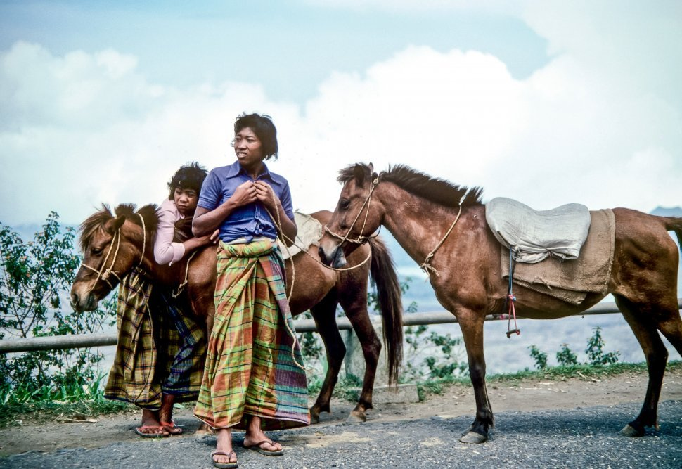 Free image of Locals standing next to their horses on the road.