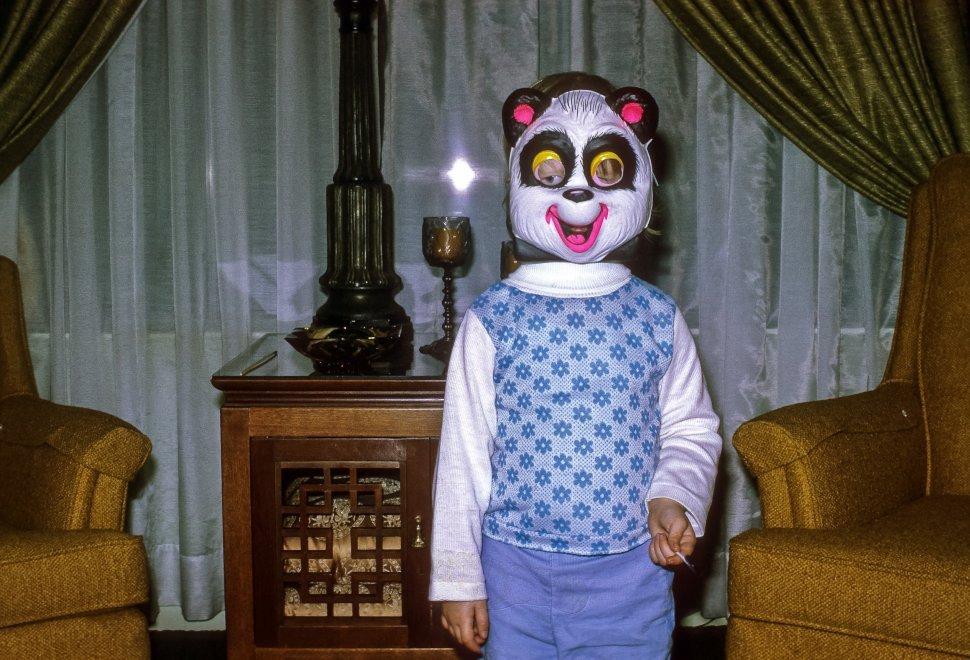 Free image of Little girl posing in her panda bear Halloween costume, USA