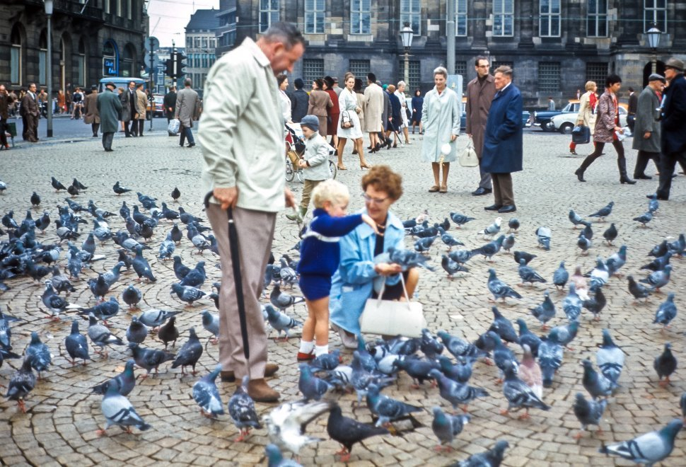 Free image of Family feeding the pigeons in the middle of a square with tourists around them, Europe