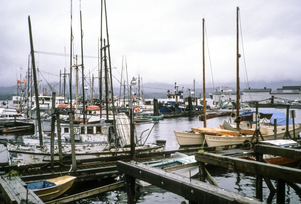 Free image of Large group of boats docked in a misty harbor, Alaska, USA