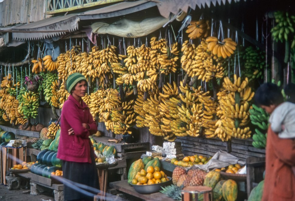 Free image of Woman standing in front of a fruit stand, Brazil