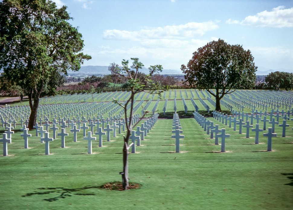 Free image of Rows of white cross grave markers in a military cemetary, USA