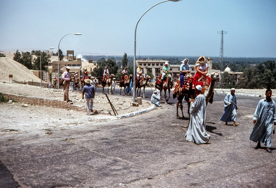 Free image of Group of tourists riding camels with guides throught the streets, Egypt