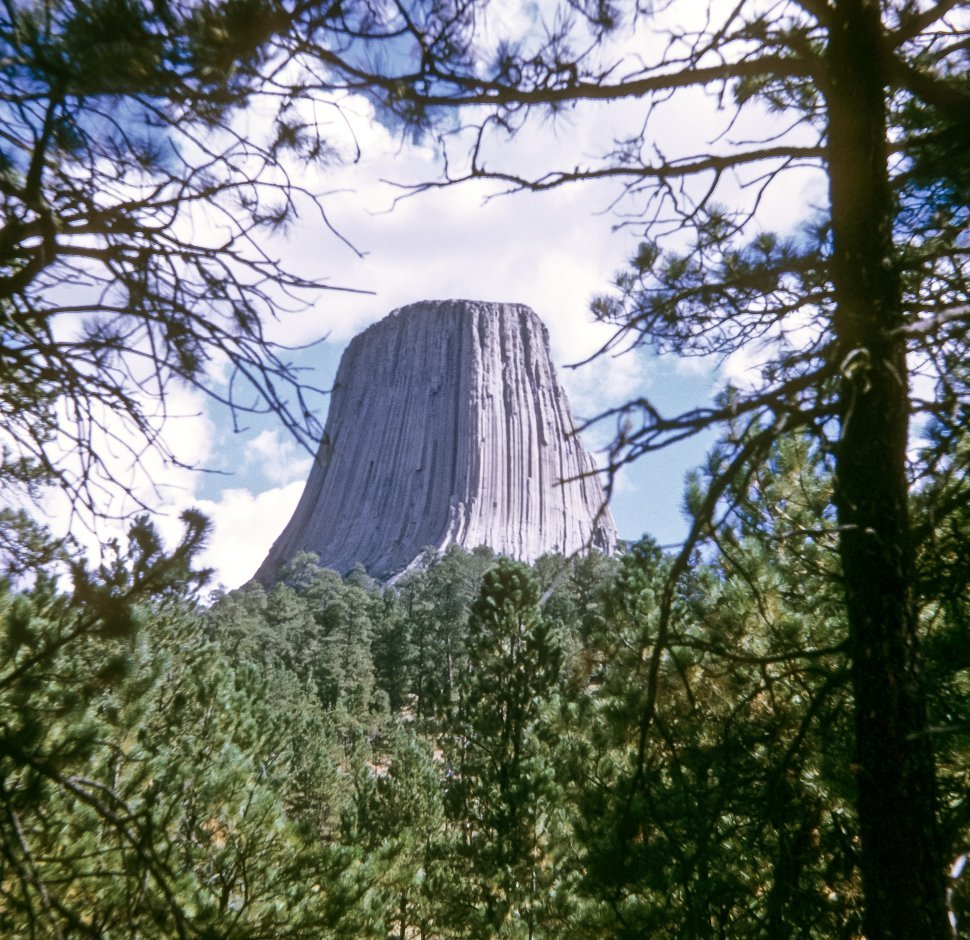 Free image of View through a circle of trees, Devil s Tower, Wyoming, USA
