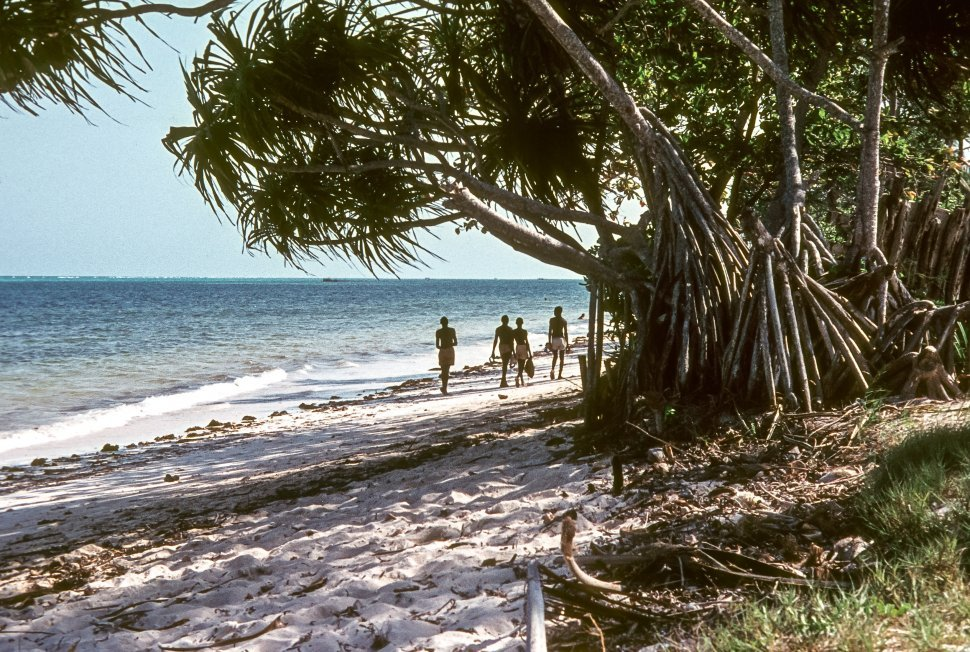 Free image of Four people walking down the beach together.