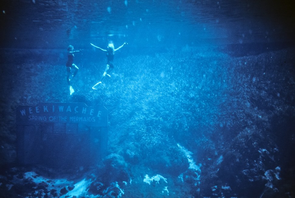 Free image of Two women performing in an underwater mermaid show, Florida USA