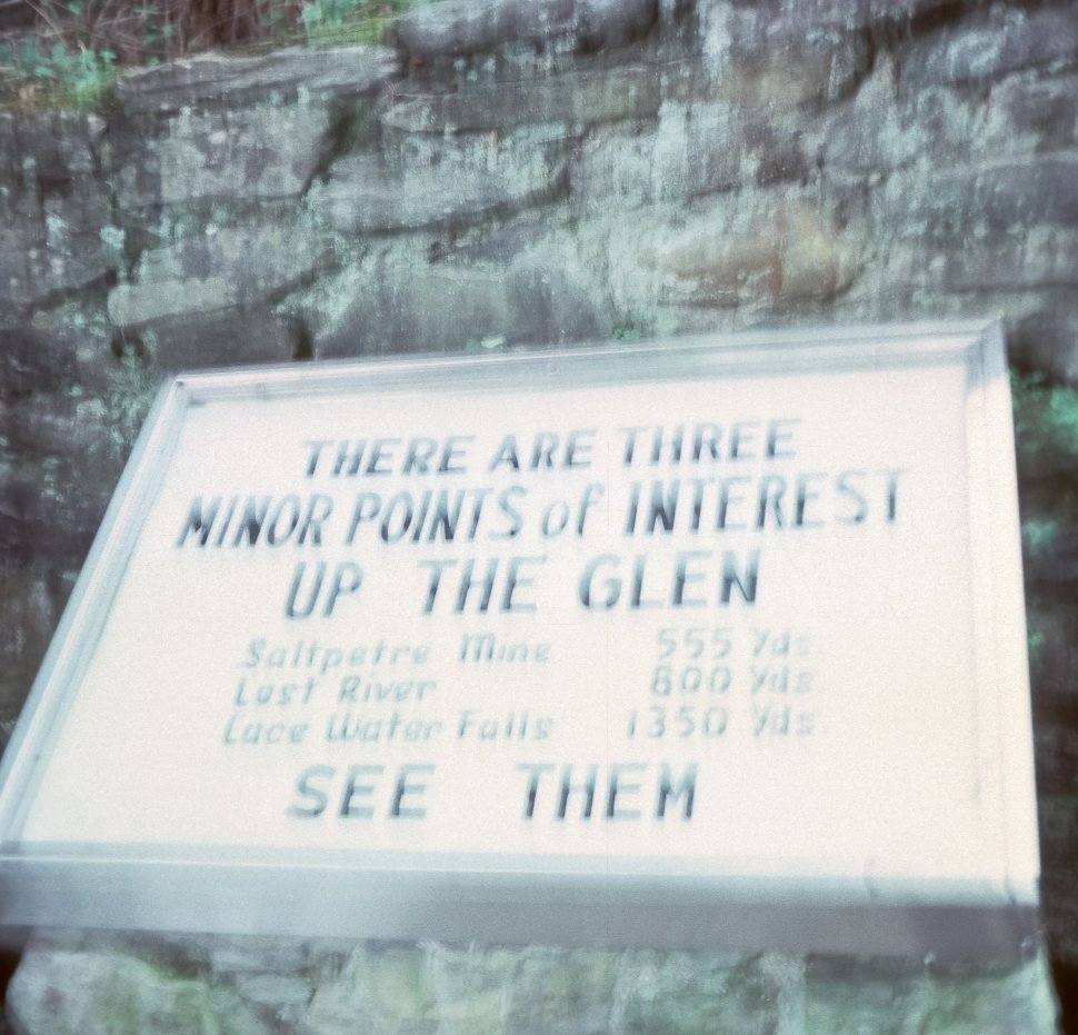 Free image of Sign directing visitors towards more sights up in a wooded glen, USA