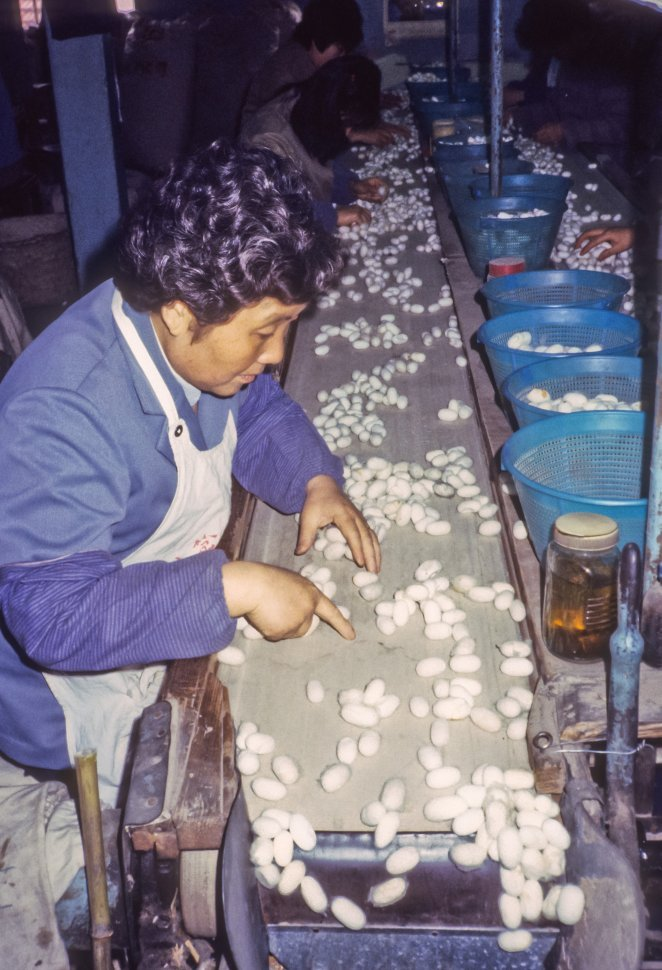 Free image of Woman sorting materials in a factory, China