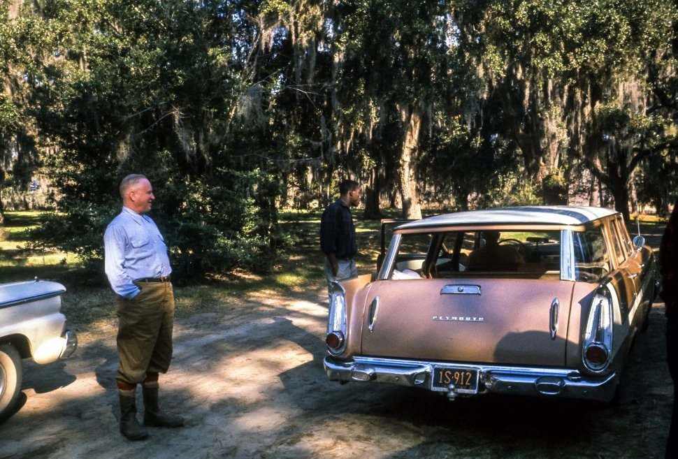 Free image of Man posing next to his station wagon in the swamp, USA