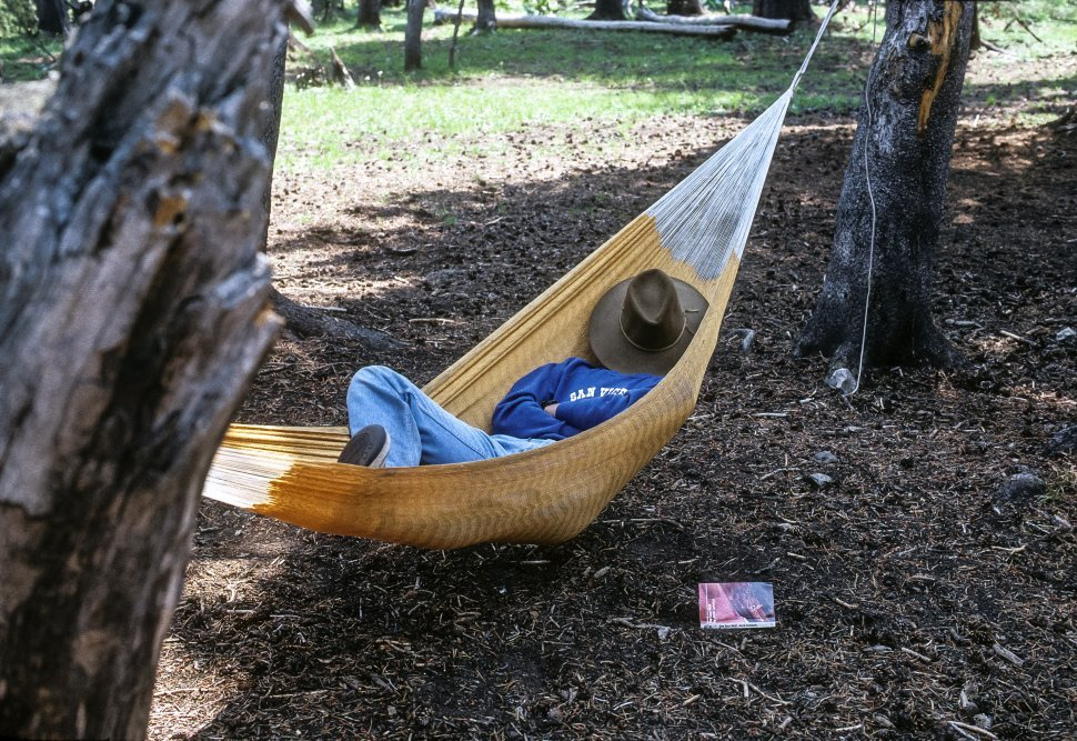 Free image of Man napping in a hammock, USA