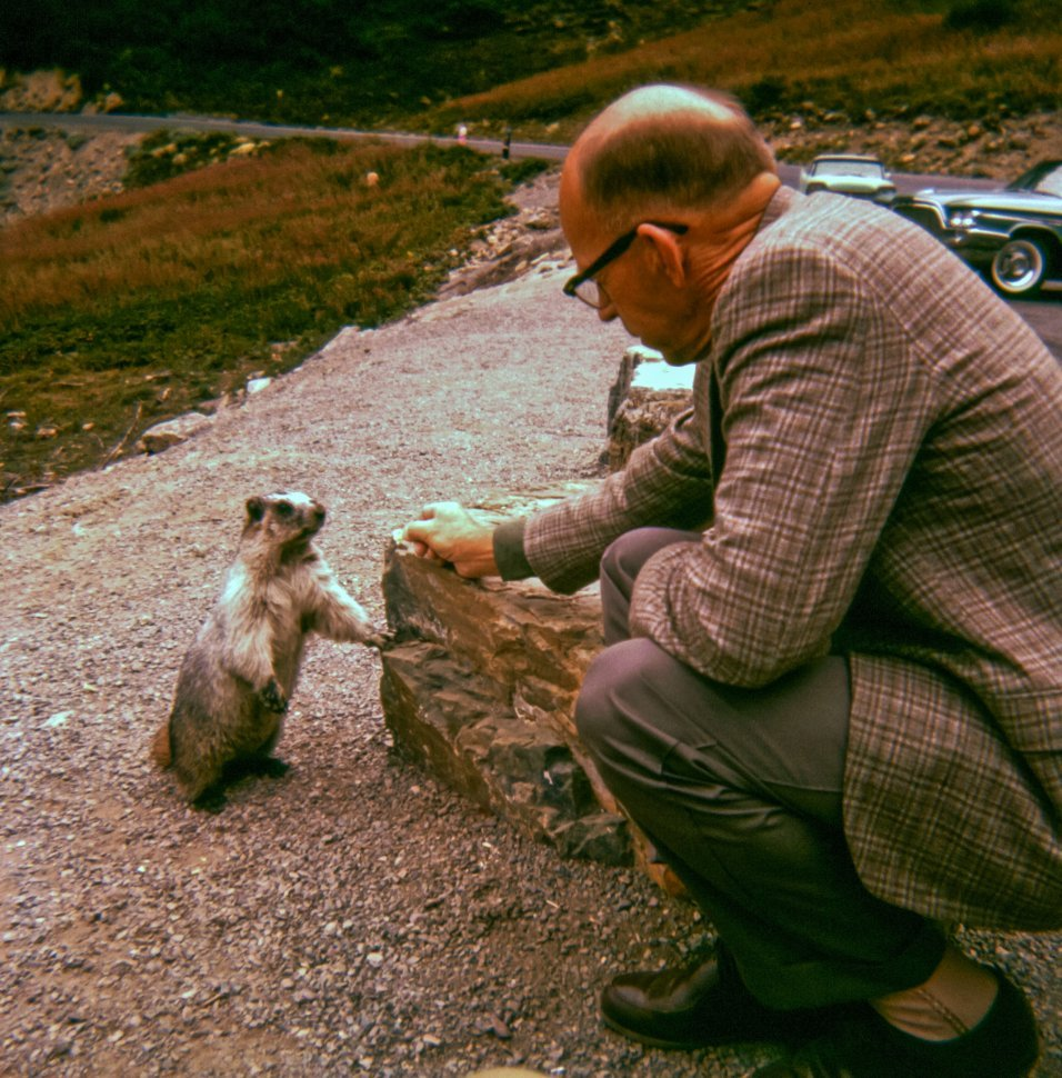 Free image of Man feeding a tall squirrel on the roadside, USA