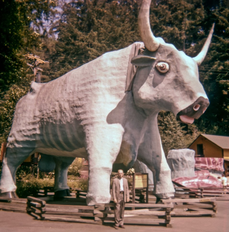 Free image of Man posing underneath a giant Babe the Blue Ox sculpture, Klamath, California, USA
