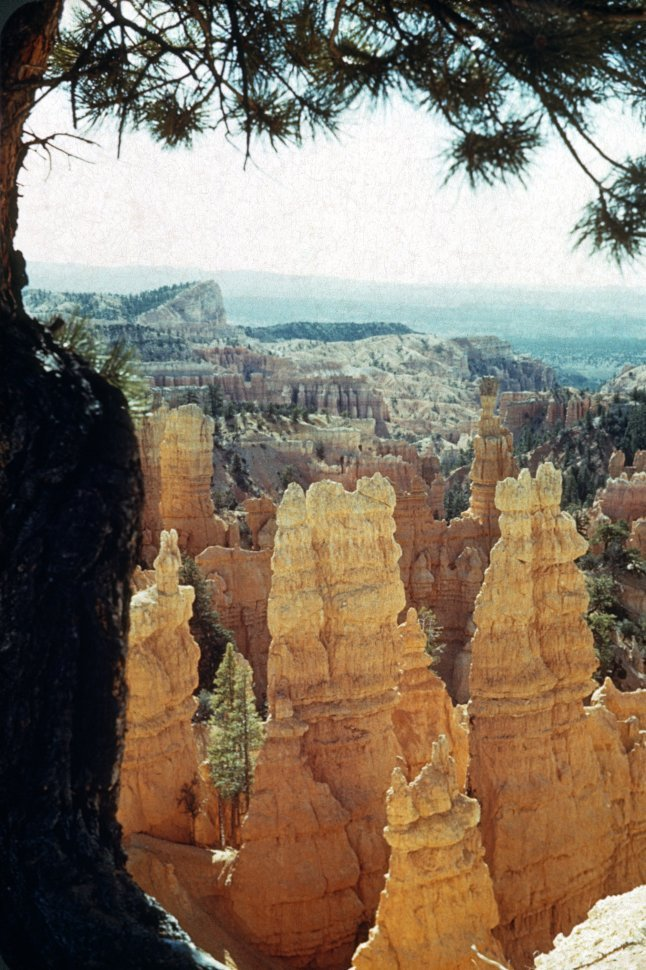 Free image of Formations called hoodoos in Bryce Canyon, Utah, USA