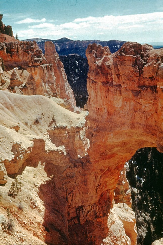 Free image of Natural bridge formation in Bryce National Park, Utah, USA