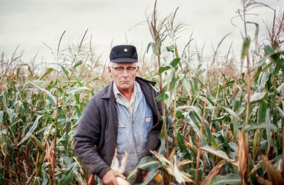 Free image of Old Farmer in the farmland