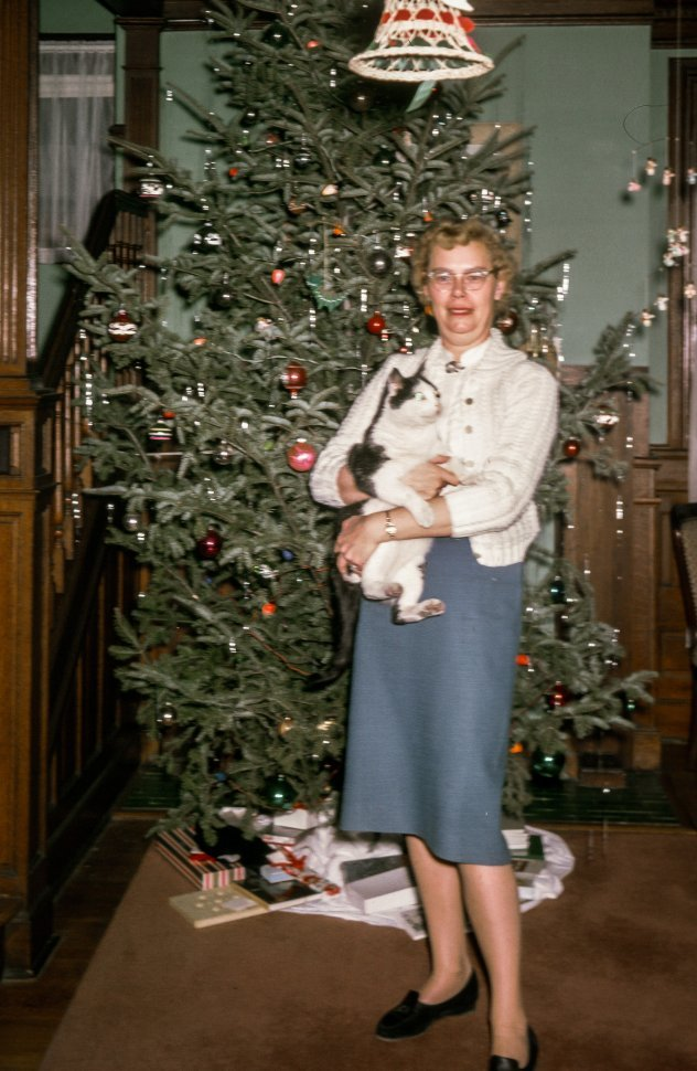 Free image of Woman posing with her cat as christmas tree in the background