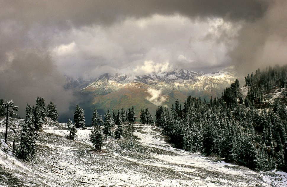 Free image of View of Stevens Pass Ski Area in Chelan County, Washington