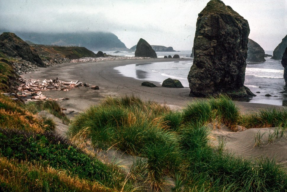 Free image of Fog around Oregon Coast, USA