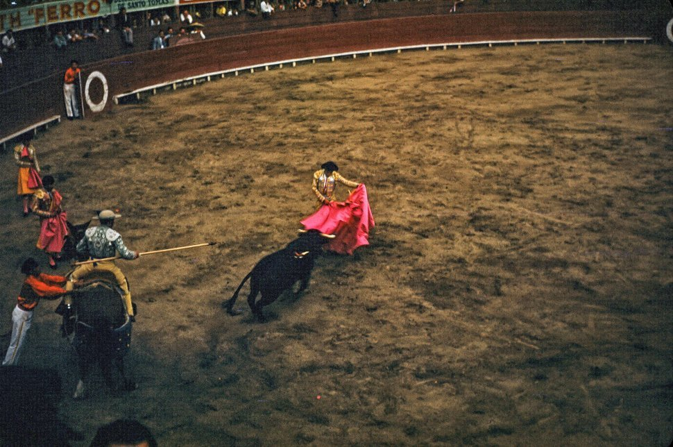 Free image of Bullfighter holding his cape during bullfighting in arena