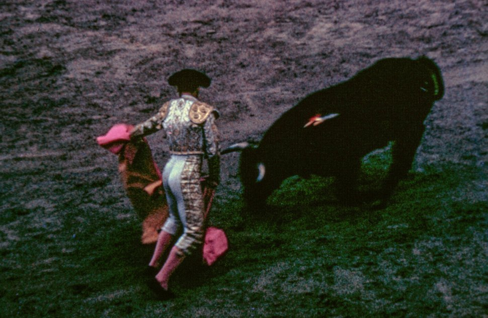 Free image of Bullfighter holding his cape during bullfighting in Mexico