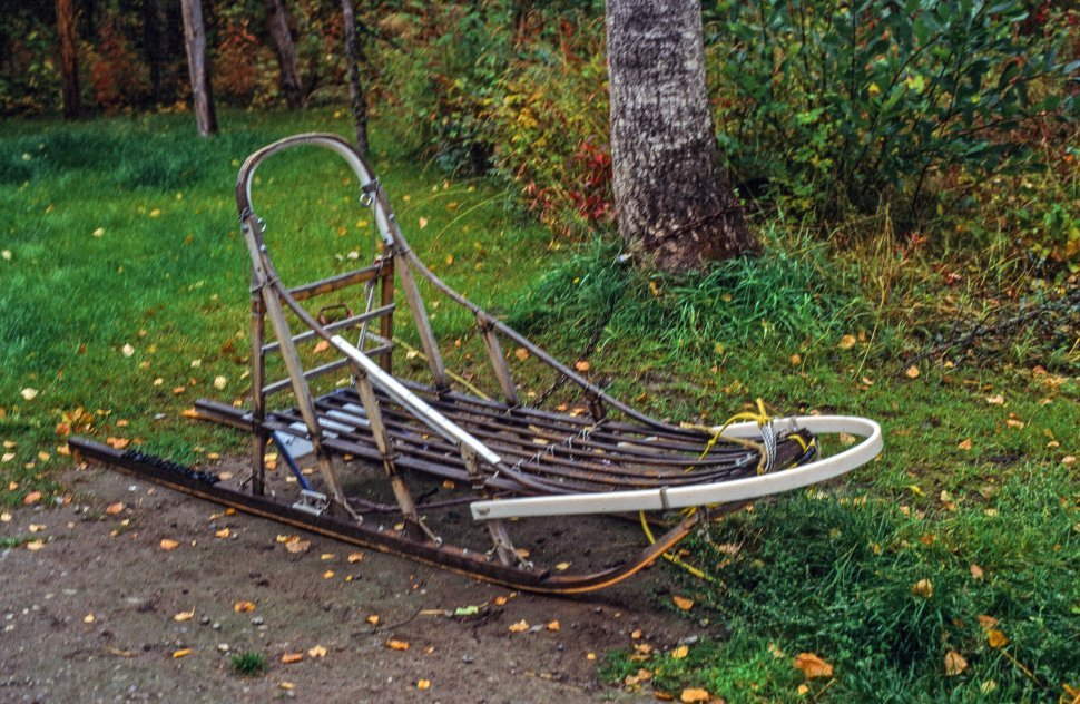 Free image of Dog sled also known as dog sleigh seen in garden during summers