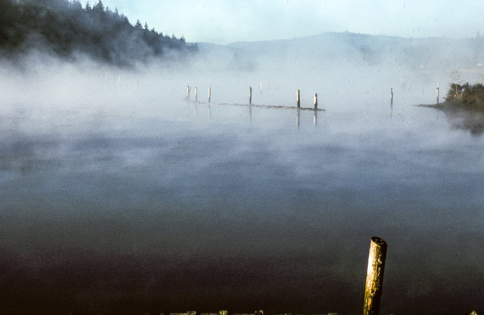 Free image of Morning mist engulfed the mooring poles in the river