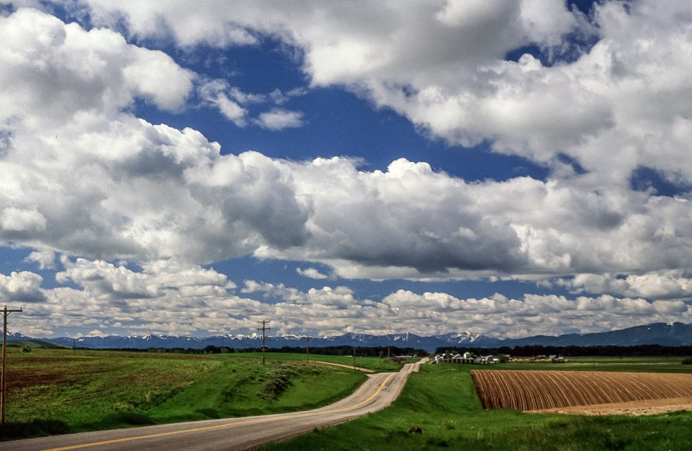 Free image of A road between farmland