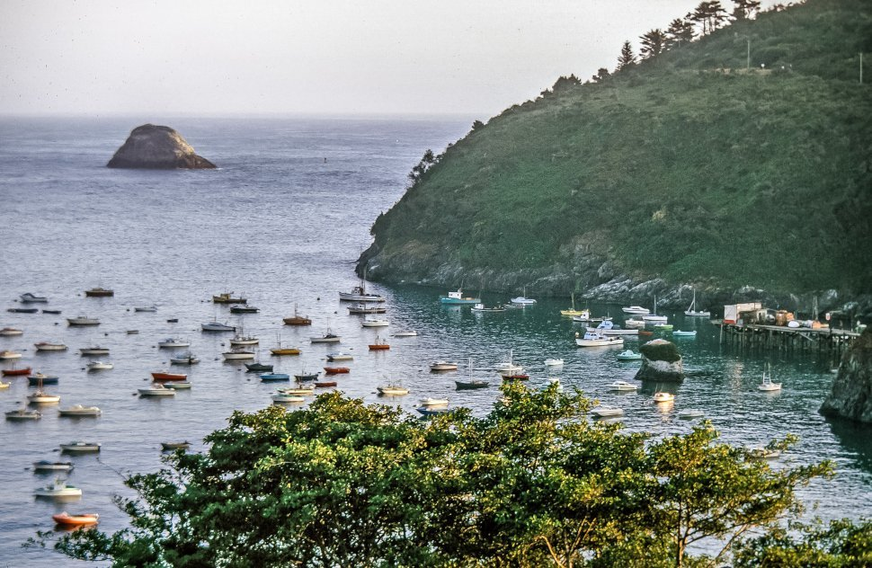 Free image of Boats in the sea